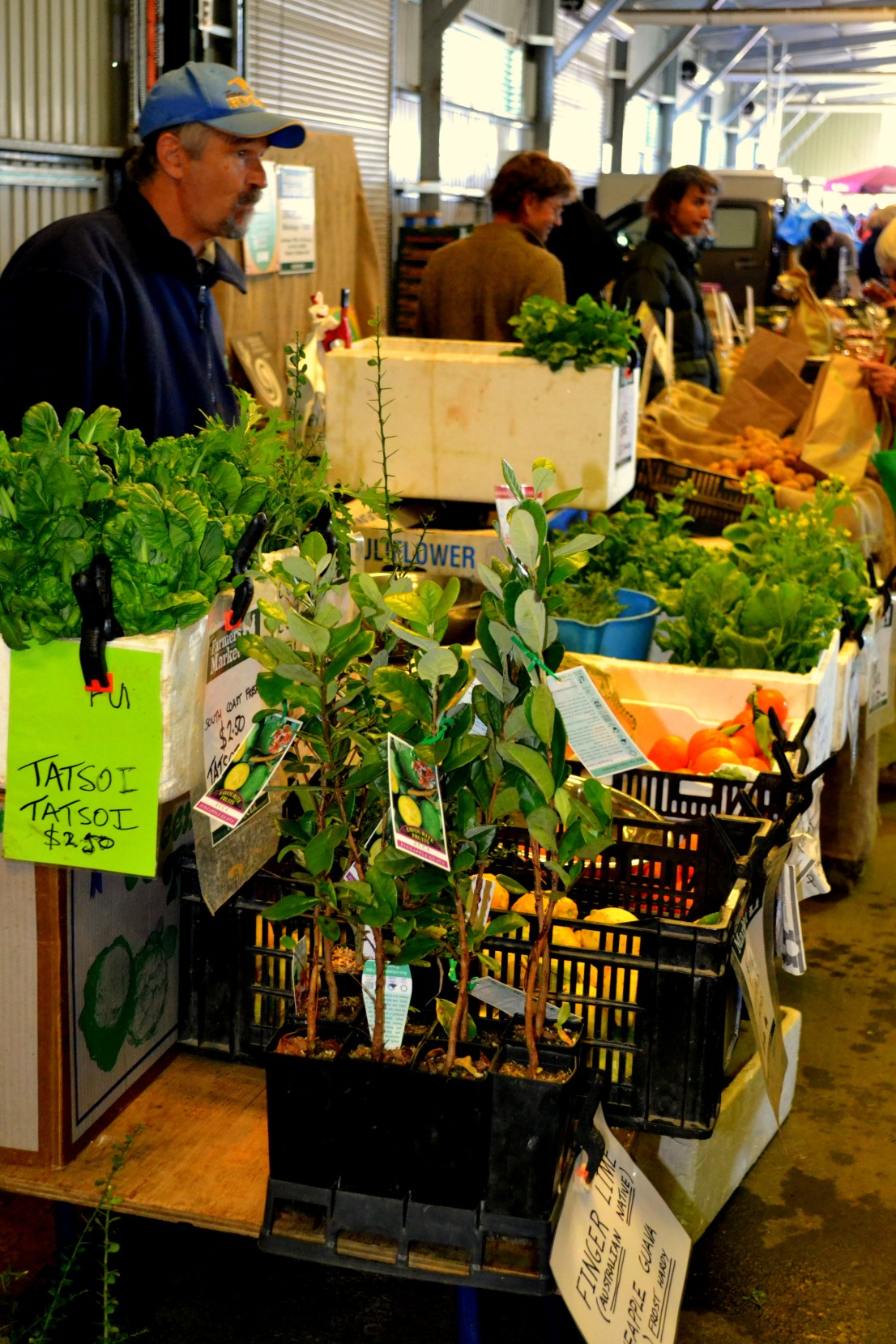 more greens Canberra Epic Farmers Market