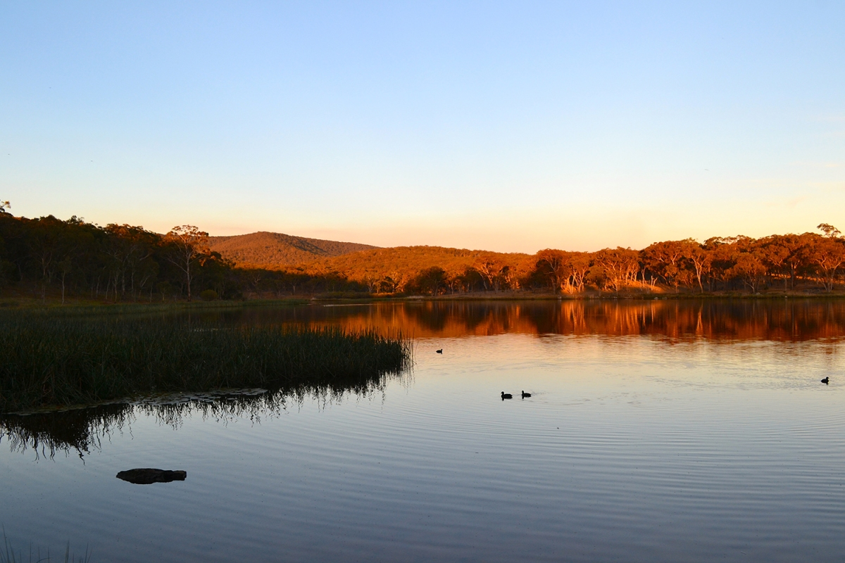 Dumaresq Dam at sunset